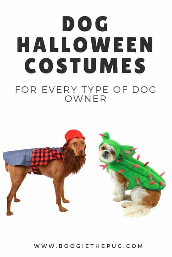 Dog Halloween Costumes For Every Type Of Dog Owner Boogie The Pug