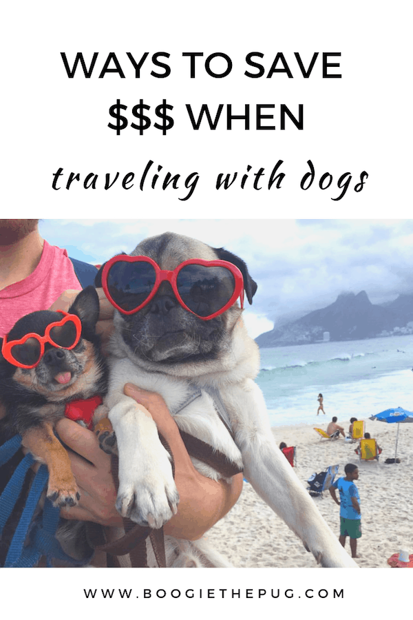 We recently saved close to $3000 when traveling with our 2 dogs. Check out these money saving dog travel tips that will help keep money in your pocket.