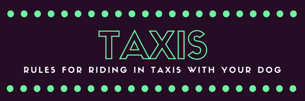 a title card saying taxis