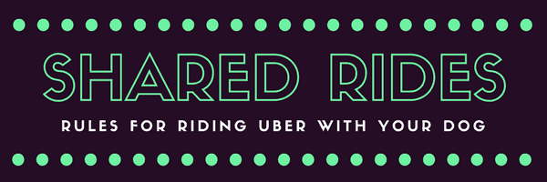 a title card saying shared rides