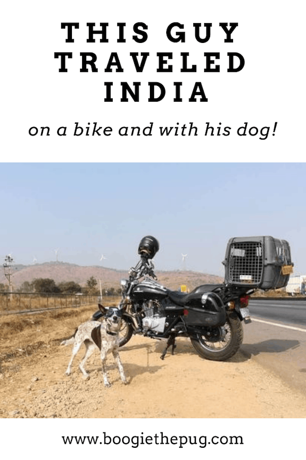 When Gowtham Shravan Kumar adopted a stray dog, he decided to bring her along on his motorcycle trips. This is how he traveled with his dog in India.