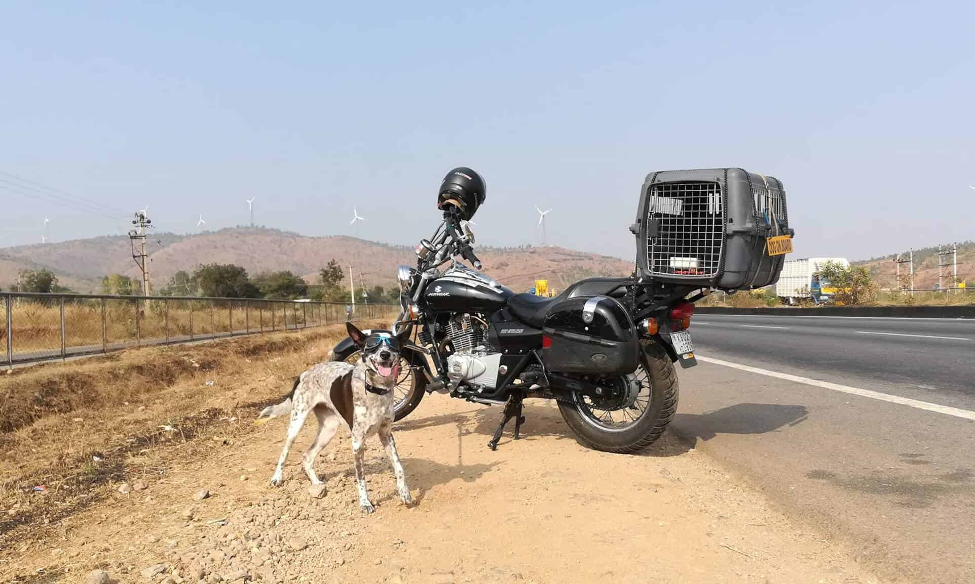 A dog with doggles stands in front of a motorcycle on a street in India.