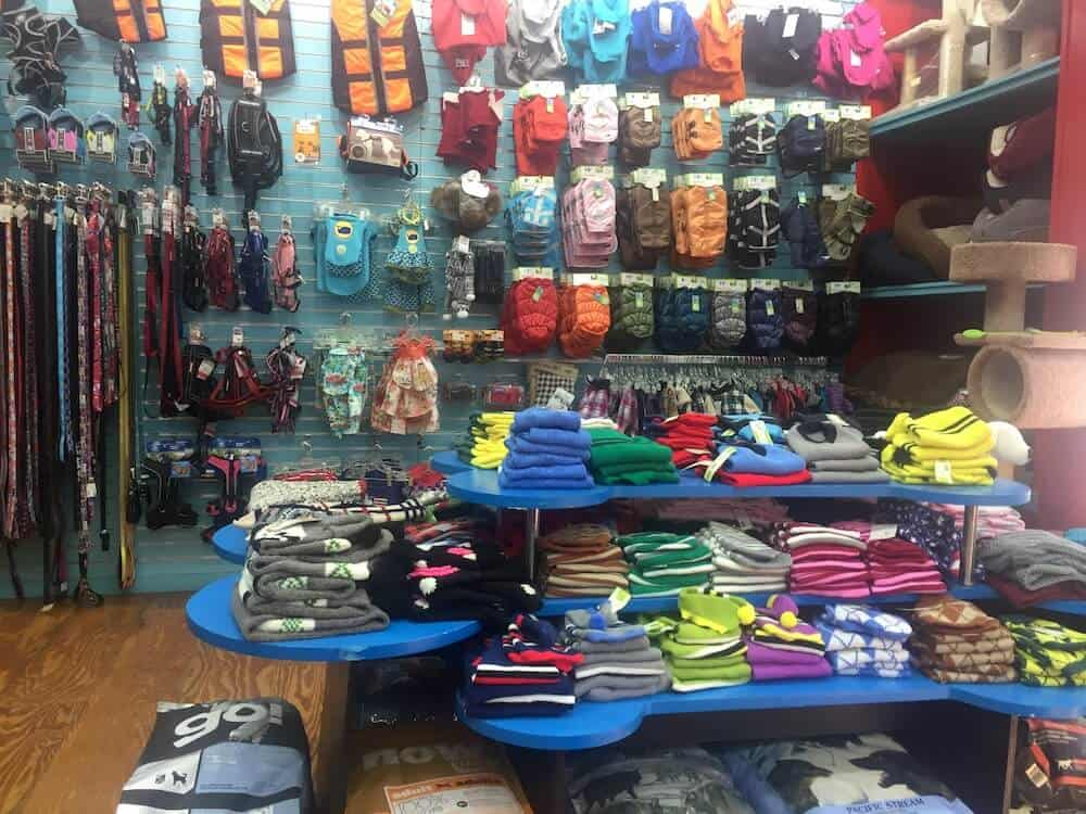 A display of products inside of the store Doggy Styles in Philadelphia.