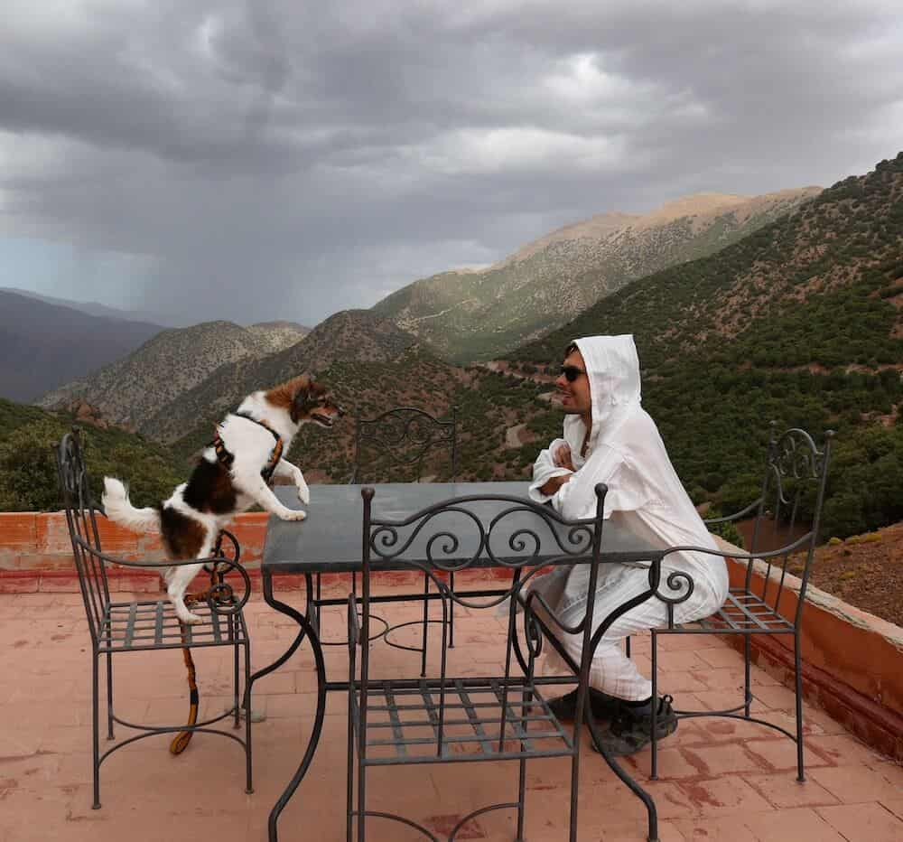 A dog and his owner sit at a table with a view of the Atlas Mountains behind them.