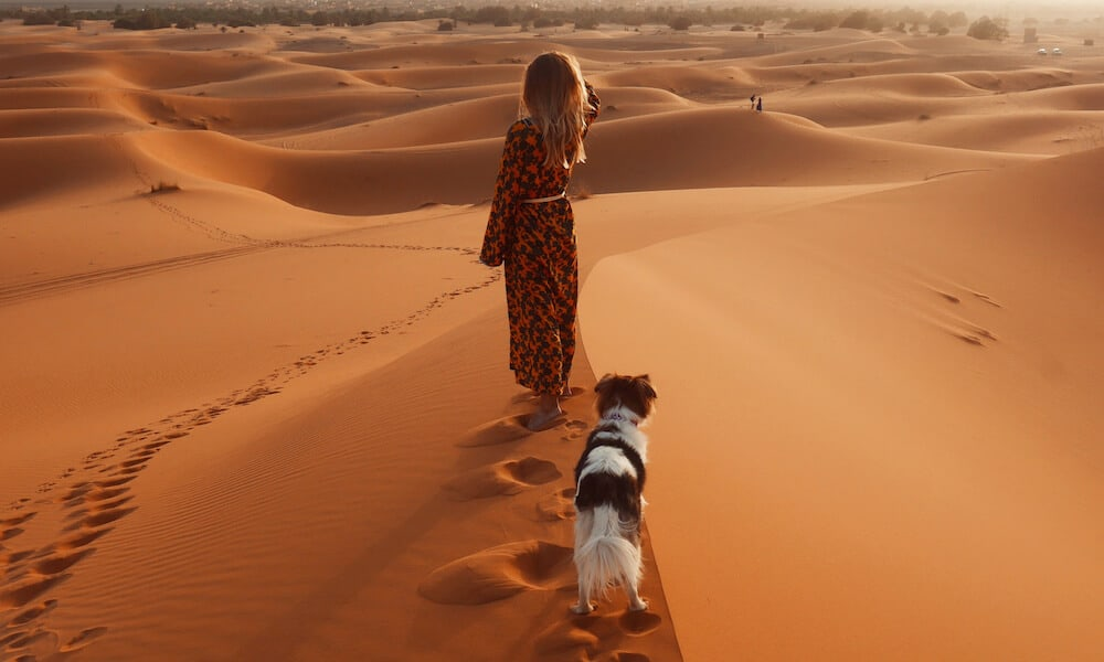 A woman and her dog walk in the Sahara desert.