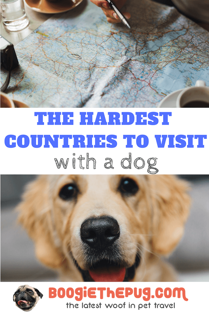 Thinking about heading to one of these places with your pup? Think again. You can do it, but it'll take some serious time and money. Here are the hardest countries to visit with a dog.