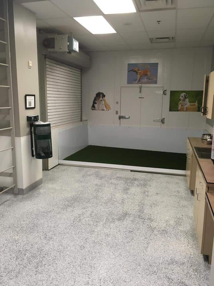 Pet Service Areas Around the World