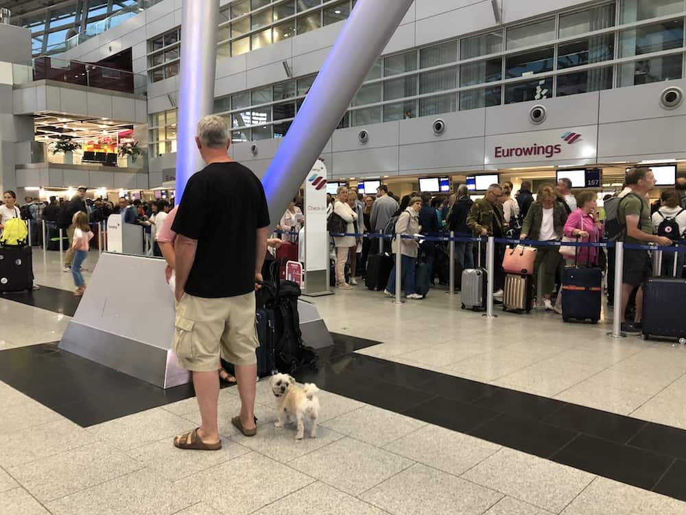 Airport Pet Service Areas Around the World