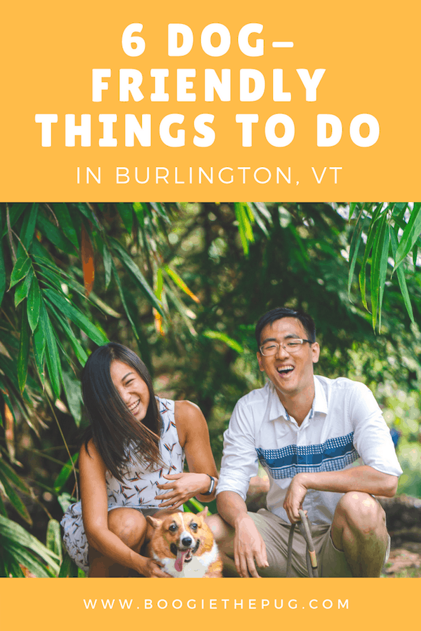 Vermont's biggest city is a dog haven! There's plenty to see and do with your pup. Here are 6 dog-friendly things to do in Burlington.