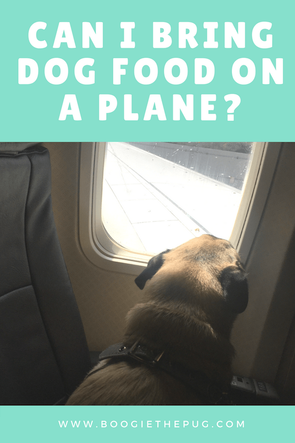 There are a million questions people have when preparing for a trip, especially if they're traveling by plane. Here's the low down on dog food on planes.