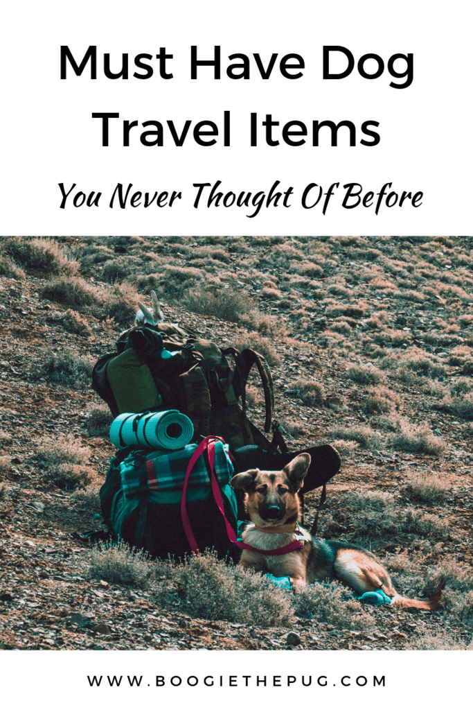 We've perfected the essential things to pack when traveling with our dogs. Some of the items certainly won't be found in your typical pet travel list.