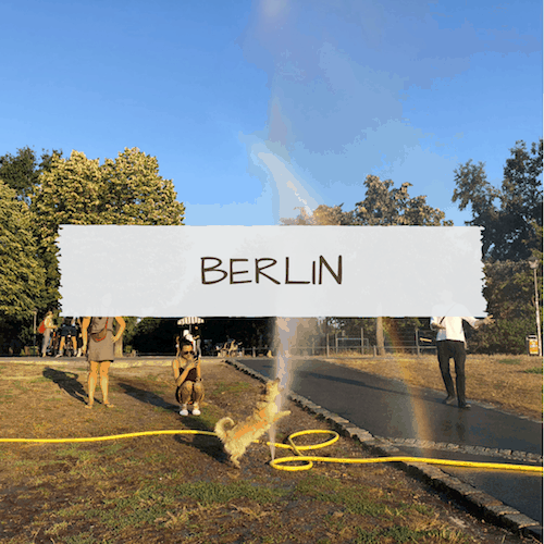 Dog-Friendly Berlin