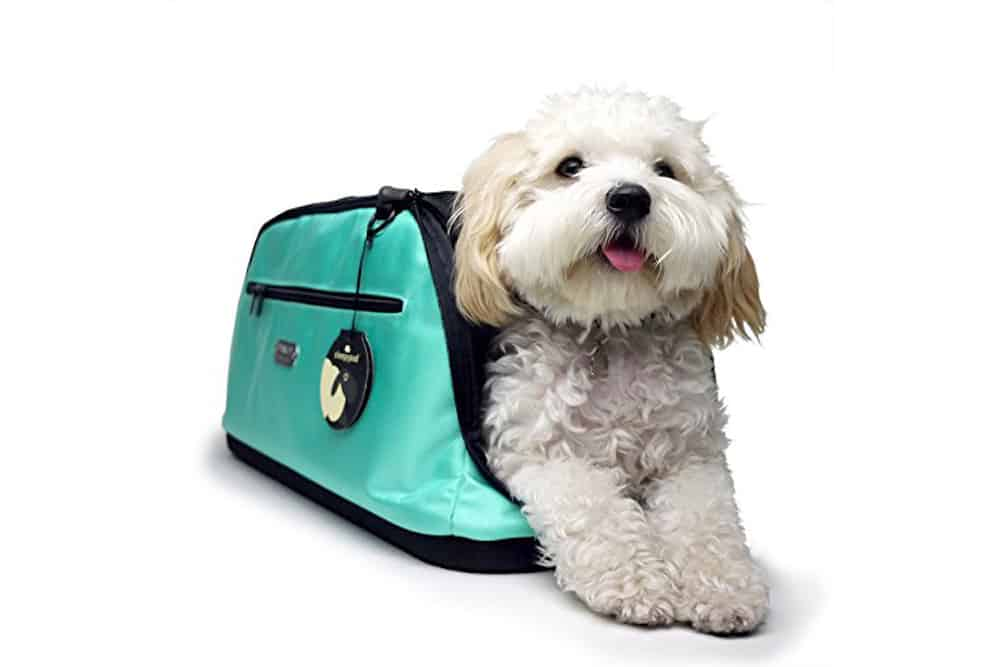The Best Pet Travel Bags For Every Budget