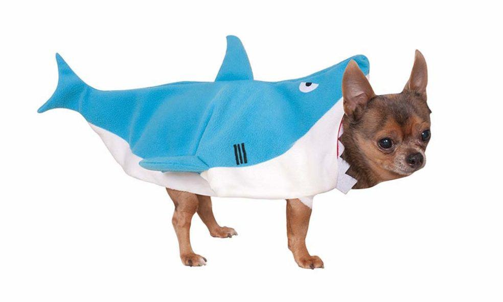 21 Great Halloween Costumes For Your Dog