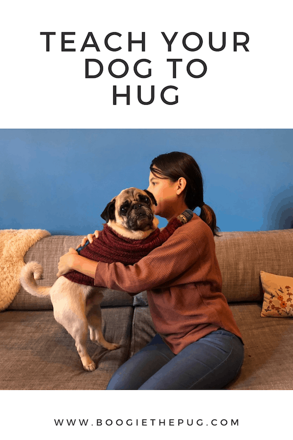 Teach your dog to hug! Plus, nineteen other fun tricks.