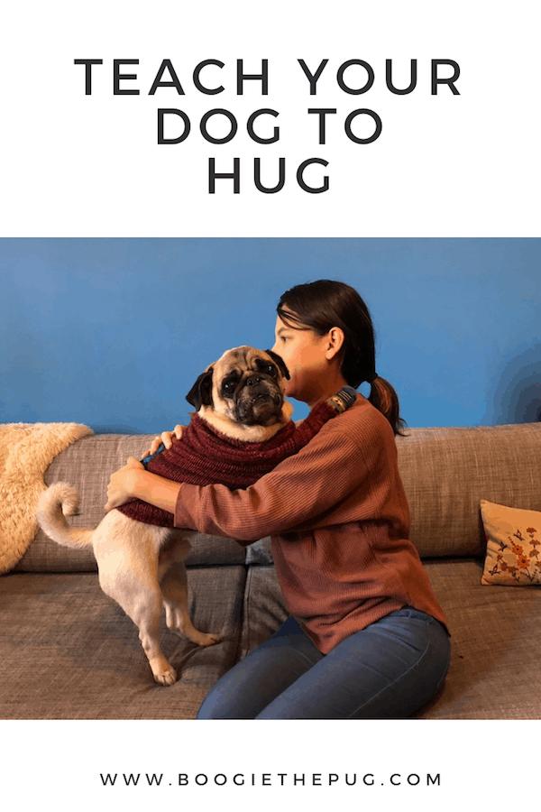 Teach your dog to hug! Plus, nineteen other fun tricks.