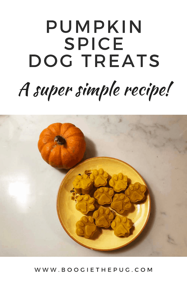 Make these pumpkin spice dog treats for your pup that they can enjoy while you drink your PSL. They're yummy, easy to make, and healthy.