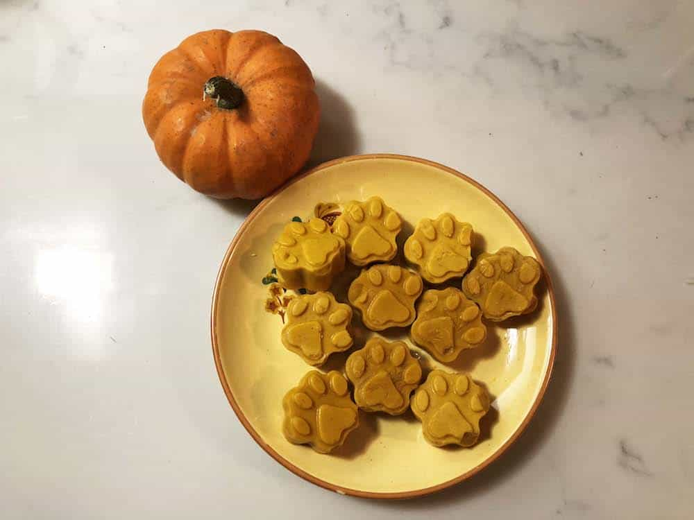 Super Simple Pumpkin Spice Dog Treats