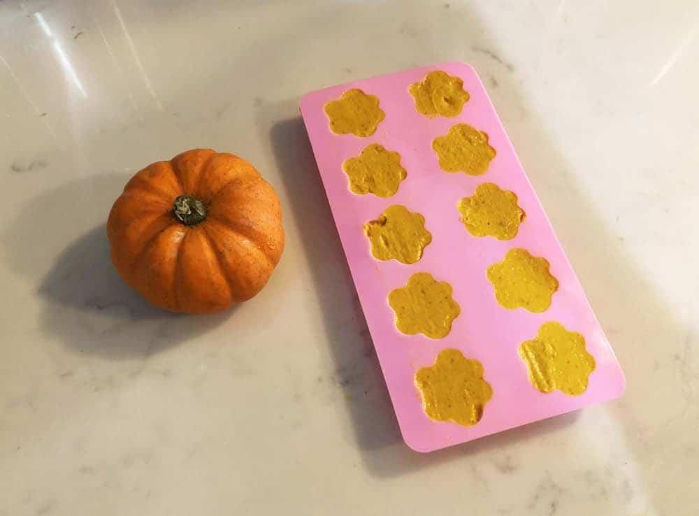 Super Simple Pumpkin Spice Dog Treats