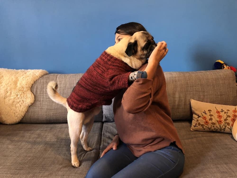 Learn to Hug