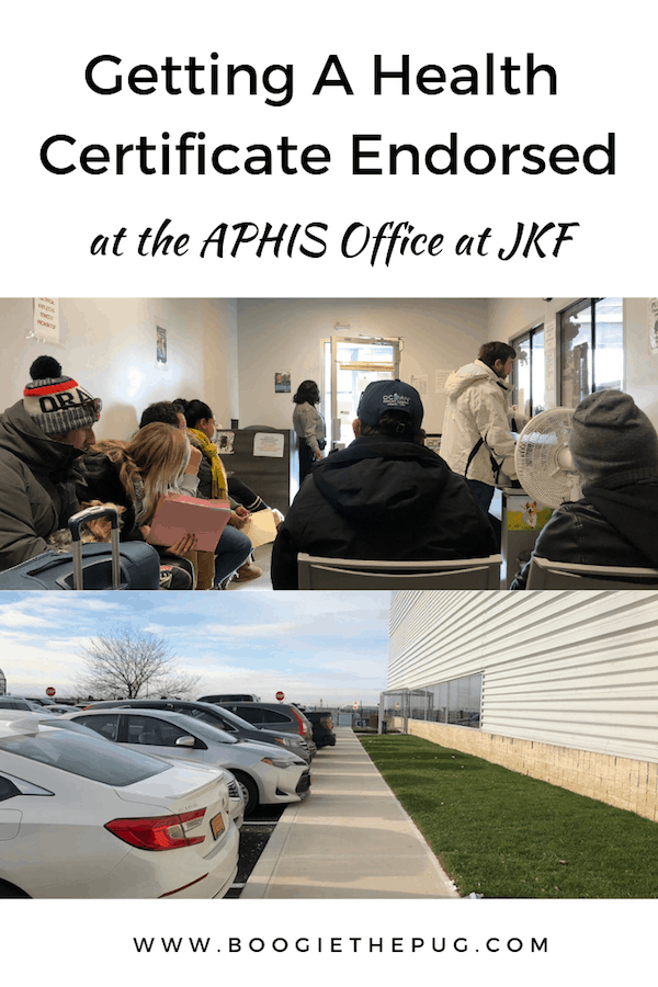 See how we got our pets health certificates endorsed in person at the APHIS office at JFK and learn how to do it yourself.