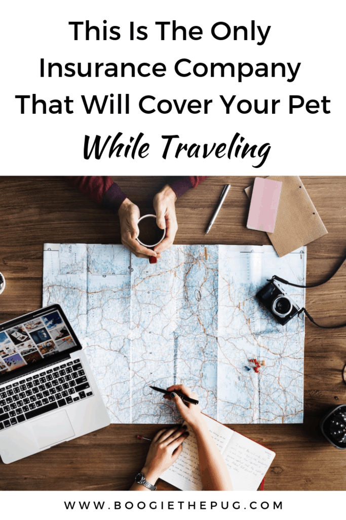 There's only one insurance that will cover your pet when you're traveling internationally. Keep your pet safe and have peace of mind with this coverage.