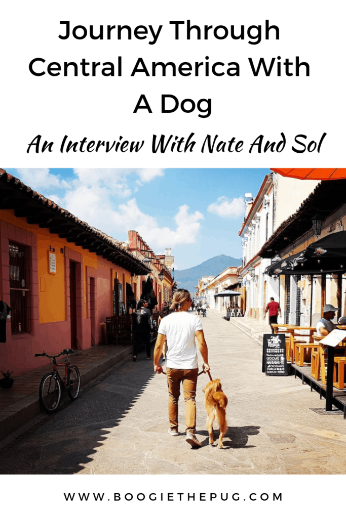 Nate and his Mexican dog Sol traveled over 11,500km, and passed through over 20 cities, visiting deserts, beaches, jungles and mountains.