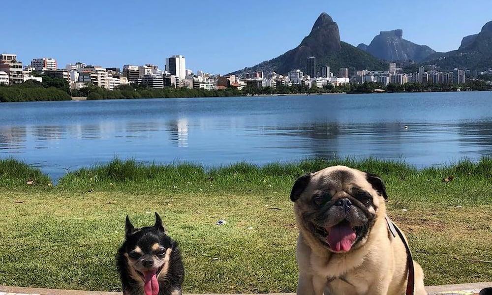 Life In Rio de Janeiro So Far: An Update