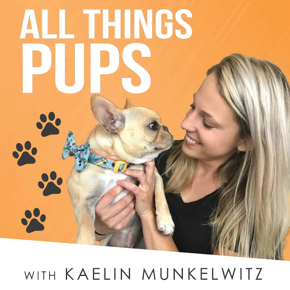 Podcasts are a great way to learn something new and pass the time. Freshen up your rotation with one of these dog-related podcasts.