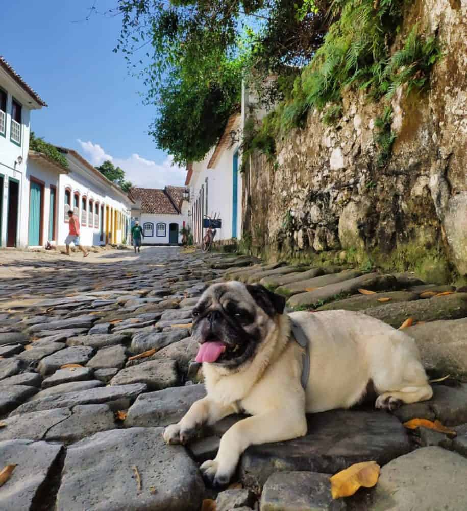 Paraty is the quintessential sleepy Brazilian town that will charm your socks off. Here are the 11 best things to do in Paraty.