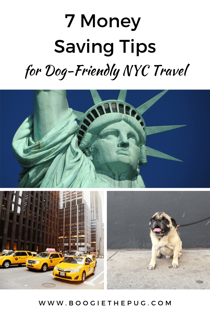New York is one of the most expensive cities in the world, but visiting with your dog doesn't have to break the bank. Follow these seven money saving tips.