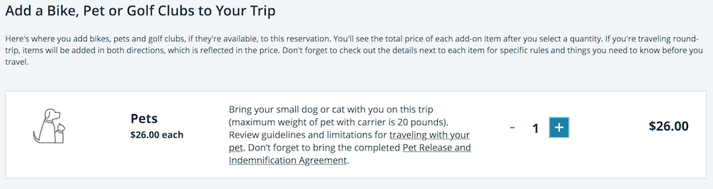 Dogs and cats can join in on Amtrak train rides throughout the United States. Here's all the information you'll need so you and your pet can ride the rails.