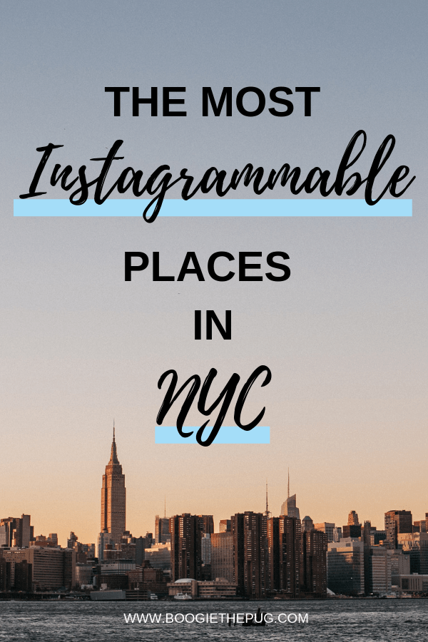 Check out where you can find New York City's most instagrammable spots! We show you NYC's most picturesque places with a little help from some dogs.