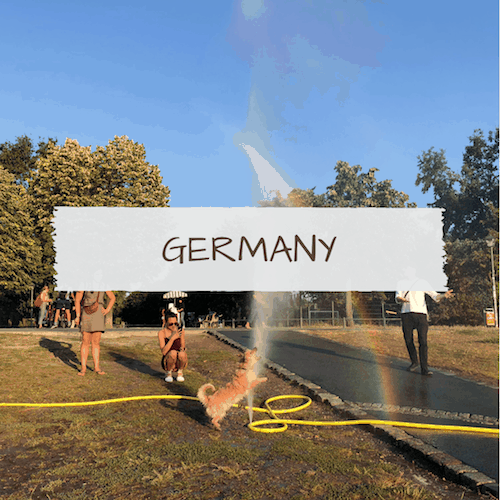 Dog-Friendly Germany