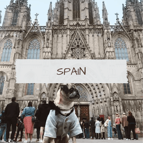 Dog-Friendly Spain