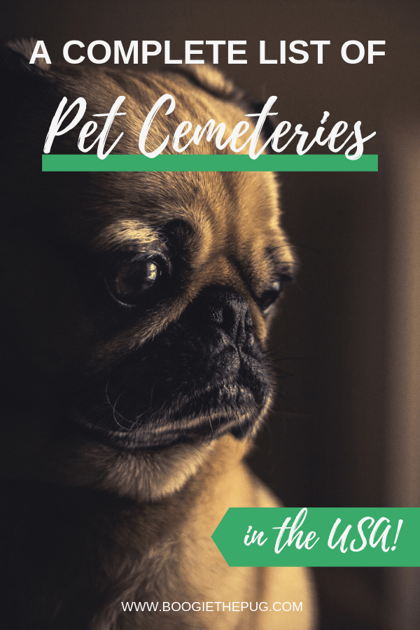There are many pet cemeteries dedicated to honoring our beloved furry and feathered, friends. Here's a complete list of pet cemeteries in the USA.