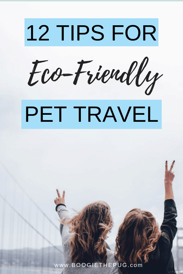 The truth is that travel, whether by plane, boat, or car is not exactly green.Here are ways you can help the environment when traveling with your pet.