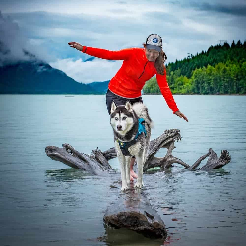 Tron the Husky plays with his mom.
