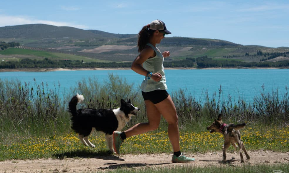 American couple Jen Sotolongo and Dave Hoch, known as Long Haul Trekkers, share how they travel with two large dogs and stay active on the road.