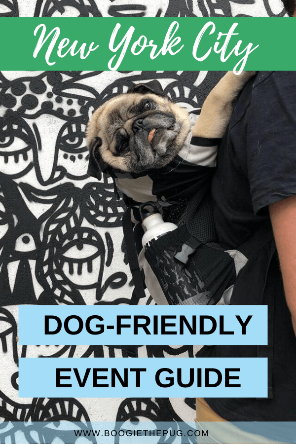 This is the ultimate New York City dog-friendly event guide! Whether you're a dog owner or a dog lover, there's always a dog event happening.