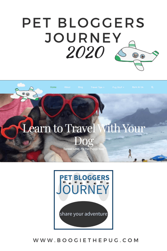 It's time to reflect on the last year and plan for the upcoming one. Here's my entry in the 2020 Pet Blogger Journey.