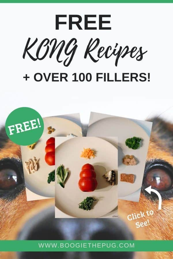 All about KONG, the durable dog toy. Discover over 100 healthy Kong fillers, plus 10 easy Kong stuffing recipes.