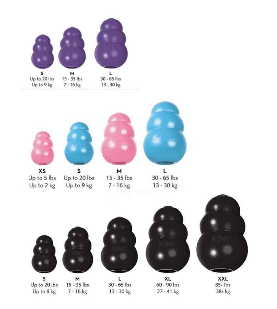 KONG size guide.