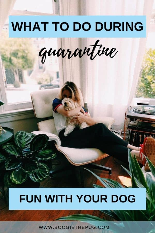 Staying indoors with your dog isn't so bad. Check out this list of activities to keep you busy while social distancing.