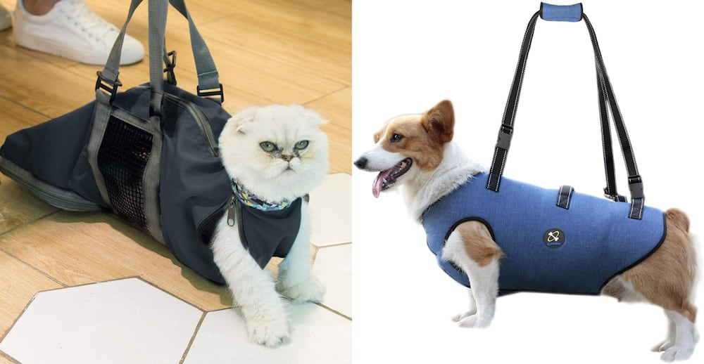 A grooming bag for a cat and dog.